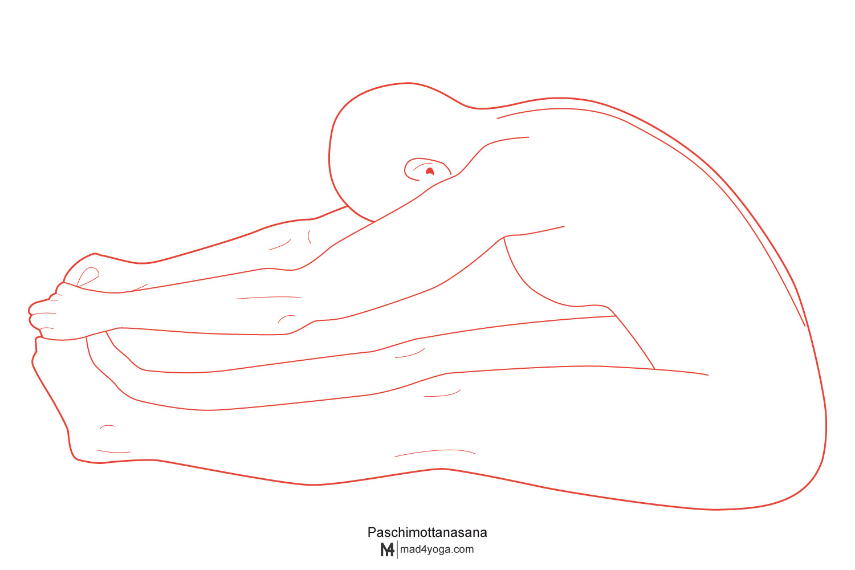 Paschimottanasana postura de la pinza