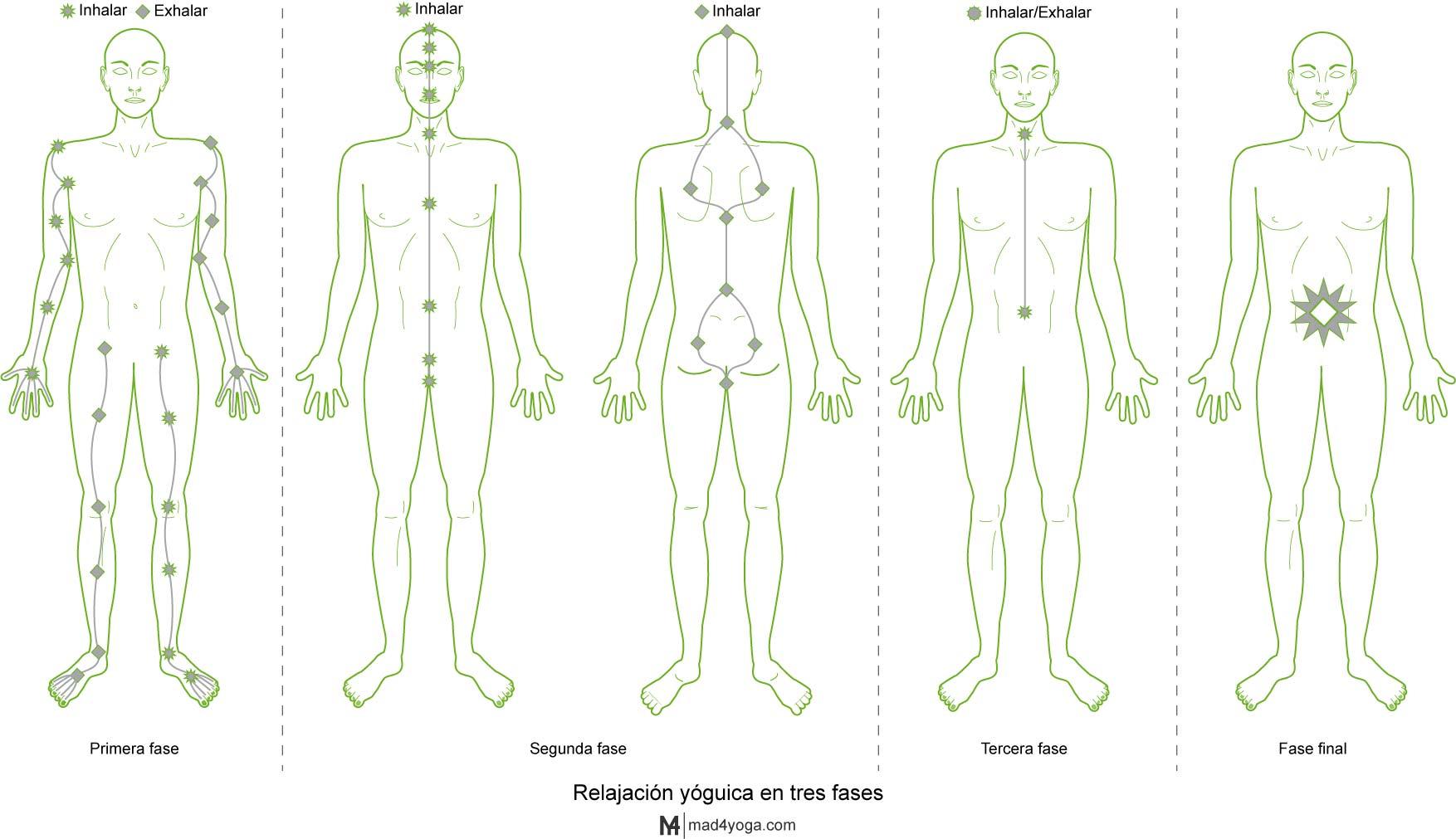 Relajación yóguica en tres fases