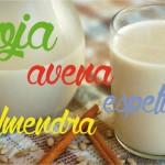 Leche vegetal, una alternativa saludable a la leche de vaca