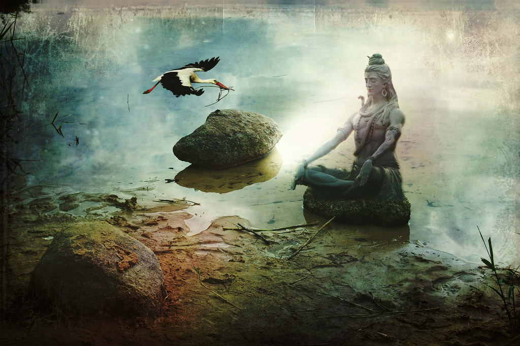 Shiva meditación
