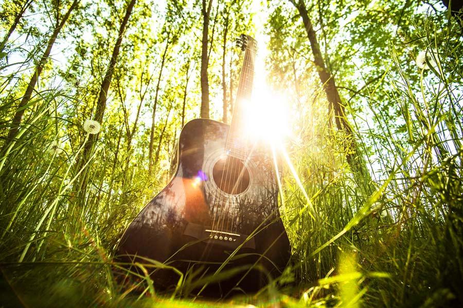 Guitarra entre arboles