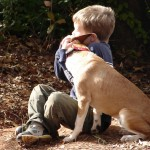 Los cuatro pasos hacia el amor